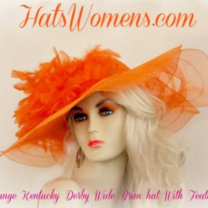 4d20342b495 Women s Yellow Custom Feathers Designer Hat Hats Match Your Dresses ...