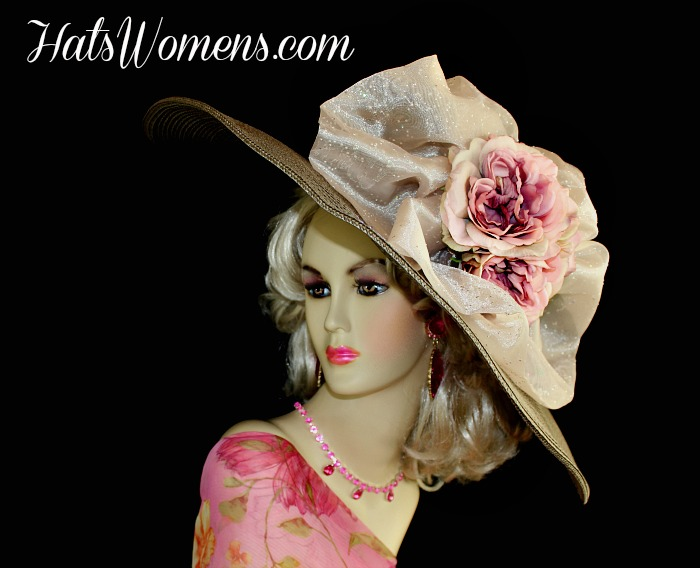60d9795dd93 Taupe Brown Grey Wide Brim Derby Hat